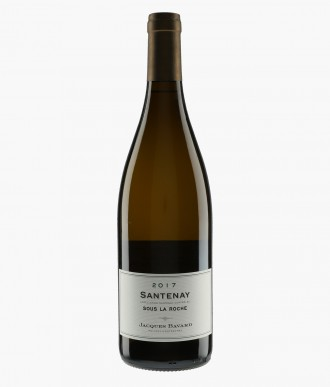 Wine Santenay Sous La Roche - BAVARD JACQUES